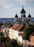 Cathédrale d'Alexandre Nevsky images libres de droits