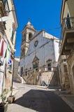 Cathédrale d'Assunta Minervino Murge La Puglia l'Italie Photos libres de droits