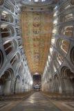Cathédrale d'Ely Photographie stock
