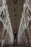 Cathédrale d'Ely Image stock