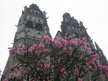 Cathédrale d'excursions avec des fleurs Photographie stock