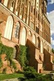 Cathédrale d'Immanuel Kant à Kaliningrad Image libre de droits