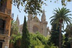 Cathédrale dans Palma Photos libres de droits