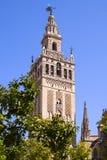 Cathédrale de Giralda Photographie stock