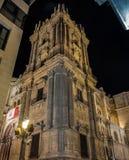 Cathédrale de Malaga, Espagne Images libres de droits