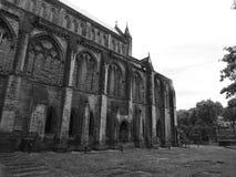 Cathédrale de mungos de St Image libre de droits