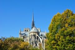 Cathédrale de Notre Dame à côté de la rivière de Paris avec des bateaux et l'été de bâtiments Photographie stock libre de droits