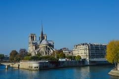 Cathédrale de Notre Dame à côté de la rivière de Paris avec des bateaux et l'été de bâtiments Photo libre de droits