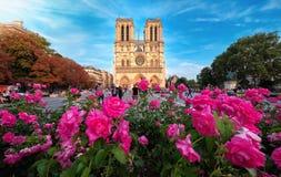 Cathédrale de Notre-Dame dans des Frances de Paris avec des roses Images stock