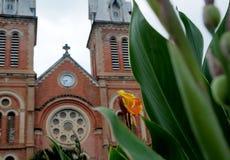 Cathédrale de Notre Dame en Ho Chi Minh City, Vietnam, fleur dans le premier plan Images libres de droits