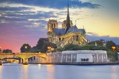 Cathédrale de Notre Dame, Paris Photo stock