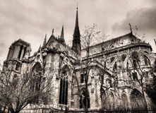 Cathédrale de Paris Notre Dame Images libres de droits