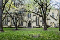 Cathédrale de rue james Images stock