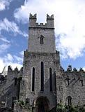 Cathédrale de rue Mary, Irlande Image libre de droits