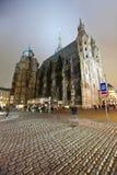 Cathédrale de rue Stephen dans la nuit. Vienne Photographie stock