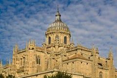 Cathédrale de Salamanque Images libres de droits