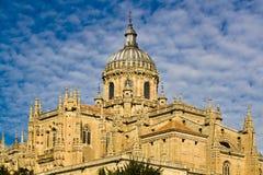 Cathédrale de Salamanque Image libre de droits