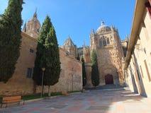 Cathédrale de Salamanque de Calle Patio Chico Photo libre de droits