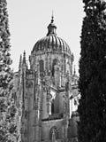 Cathédrale de Salamanque en noir et blanc images stock