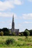 Cathédrale de Salisbury des prés de l'eau, WILTSHIRE, Angleterre photo libre de droits