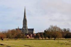Cathédrale de Salisbury et prés antiques de l'eau Photographie stock libre de droits