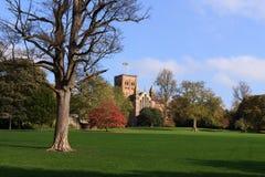 Cathédrale de St Albans image libre de droits