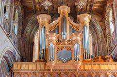 Cathédrale de St Davids, Pays de Galles, R-U images libres de droits