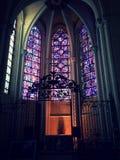 Cathédrale de StVitus Photographie stock