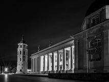 Cathédrale de Vilnius la nuit Photographie stock libre de droits