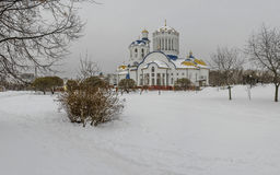 Cathédrale des saints de Moscou Image libre de droits