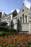 Cathédrale Dublin d'église du Christ Image stock