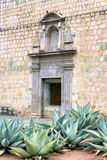Cathédrale et agave Images stock