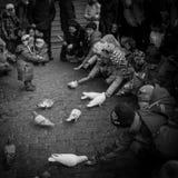 Cathédrale et pigeons de sophia de saint Image stock