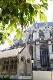 Cathédrale France 2 d'Amiens Photo libre de droits