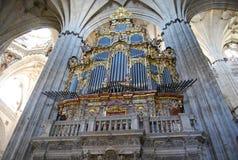 Cathédrale musicale Salamanque d'organe image libre de droits