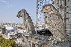 Cathédrale Notre Dame Photo stock