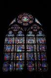 Cathédrale Notre Dame de Pari Fotografia Stock