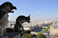 Cathédrale Notre Dame de Paris. Birdview from top of Cathédrale Notre Dame de Paris, France Stock Photos