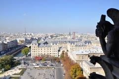 Cathédrale Notre Dame de Paris. Birdview from top of Cathédrale Notre Dame de Paris, France Royalty Free Stock Photo