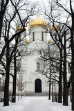 Cathédrale orthodoxe russe au jour d'hiver Photo stock