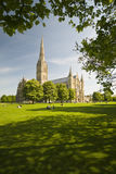 cathédrale Salisbury photos stock
