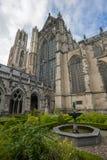 Cathédrale Utrecht de St Martins Photos libres de droits