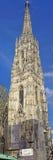 Cathédrale Vienne de rue Stephens Photo libre de droits