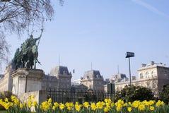 cath courtyard贵妇人・ de drale notre巴黎 免版税库存照片