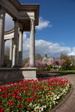 Cathays Park Stock Photography