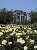 Cathays Parkuje pokazywać Cenotaph w Cardiff południowych waliach Obrazy Royalty Free