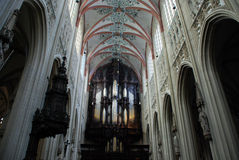 Cathdral Saint Jan Den Bosch Stock Image