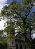 The Cathedral. St.Michael's Anglican Cathedral in a shadow of a tree in Bridgetown, Barbados Stock Image
