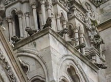 Cathedral, Amiens, France Stock Image