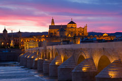 Cathedral And Roman Bridge At Night, Cordoba Stock Images